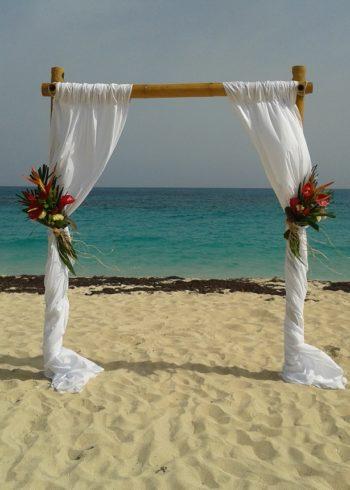 Tropical flowers beach Canopy