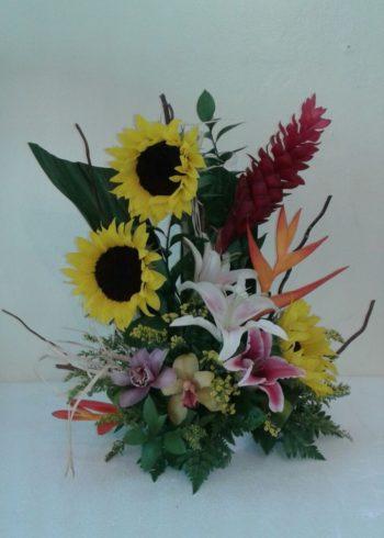 GET WELL Flowers flores sxm arrangements