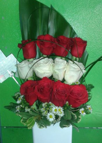 just because white and red roses modern design