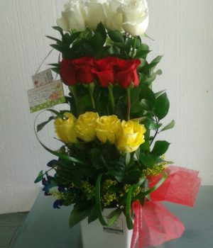 Birthday Exotic 12 White, Yellow and Red Roses
