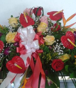 condolences-004-sm-8